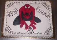 torta di compleanno - spiderman